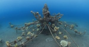 The Best Ship Wreck Diving Videos